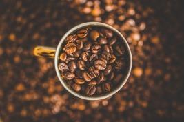 northernmunkeebites.honestcoffee